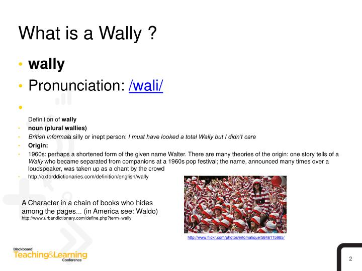 What is a Wally ?