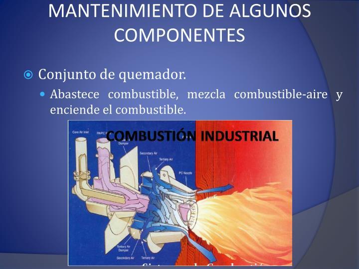 MANTENIMIENTO DE ALGUNOS COMPONENTES