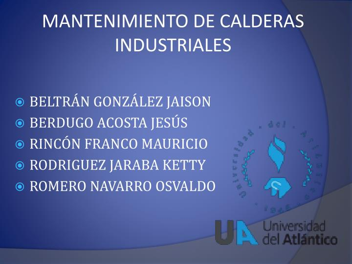 MANTENIMIENTO DE CALDERAS INDUSTRIALES