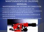 mantenimiento de calderas mensual1