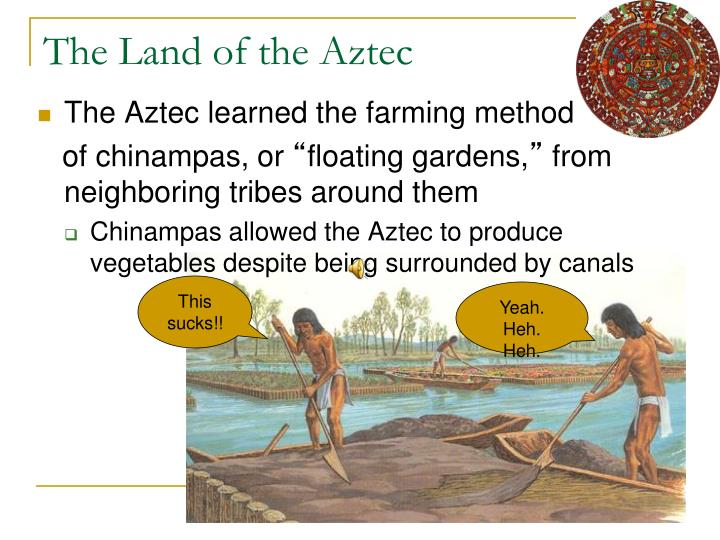 PPT - The Aztec PowerPoint Presentation - ID:2324777