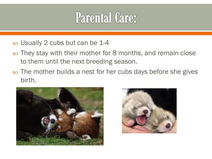 Parental Care:
