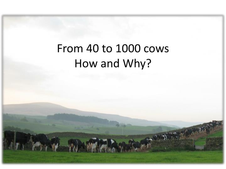 From 40 to 1000 cows how and why