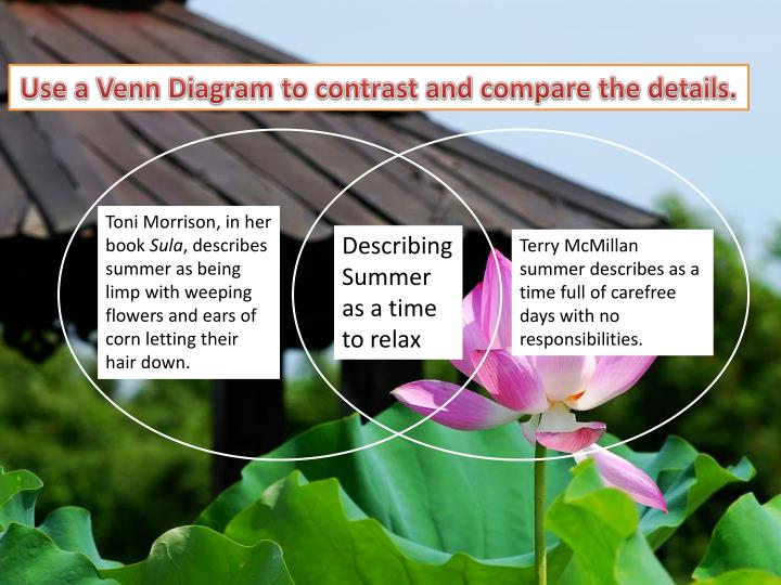 Use a Venn Diagram to contrast and compare the details.