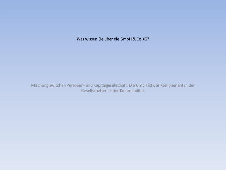 Was wissen Sie über die GmbH & Co KG?