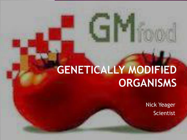 the problem of genetically modified foods essay