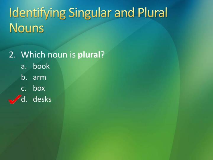 Identifying Singular and Plural Nouns