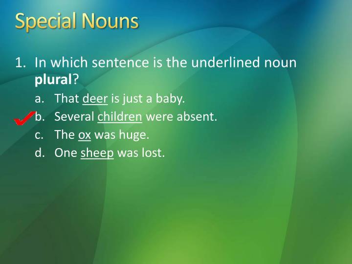 Special Nouns