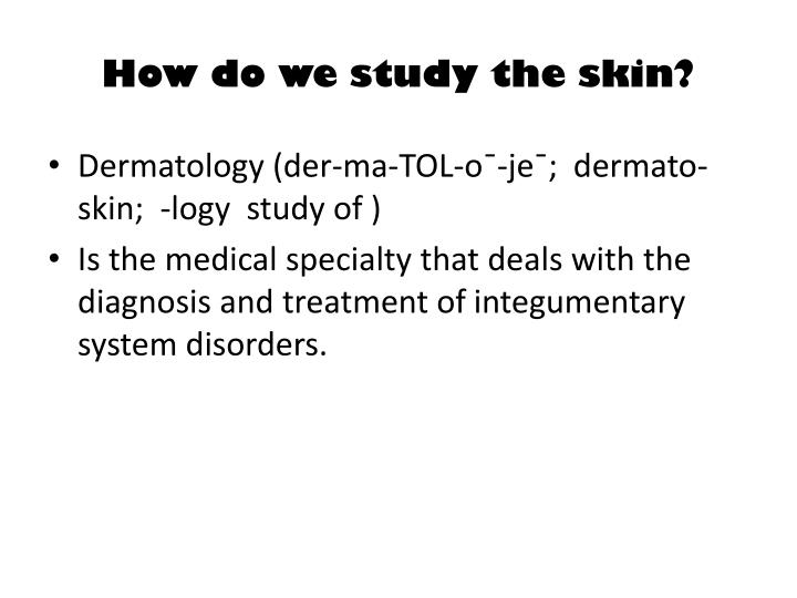 How do we study the skin?