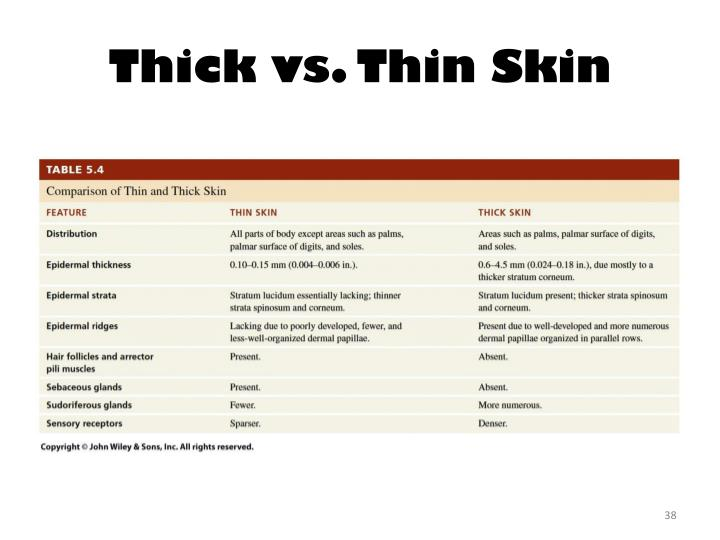 Thick vs. Thin Skin