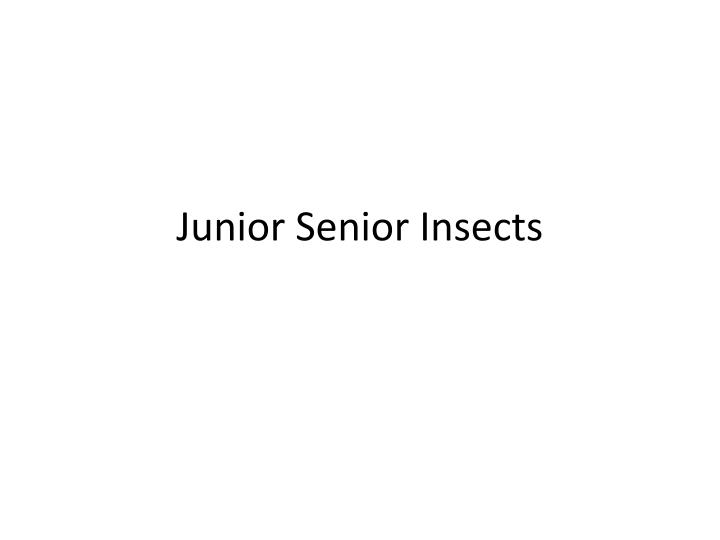 Junior senior insects