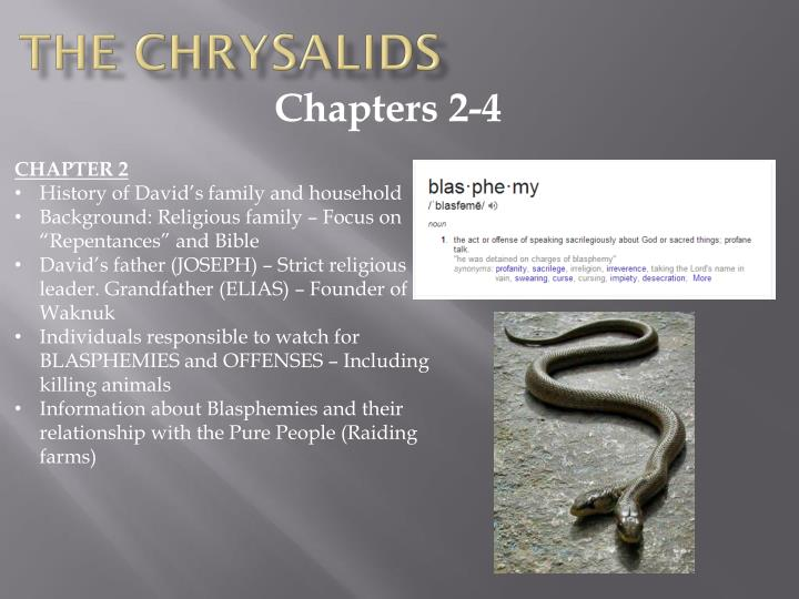 Chapters 2-4