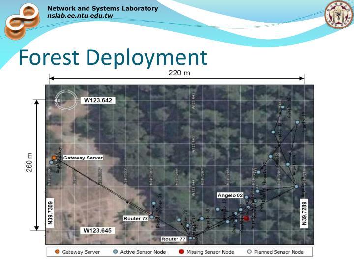 Forest Deployment