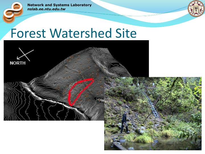 Forest Watershed Site