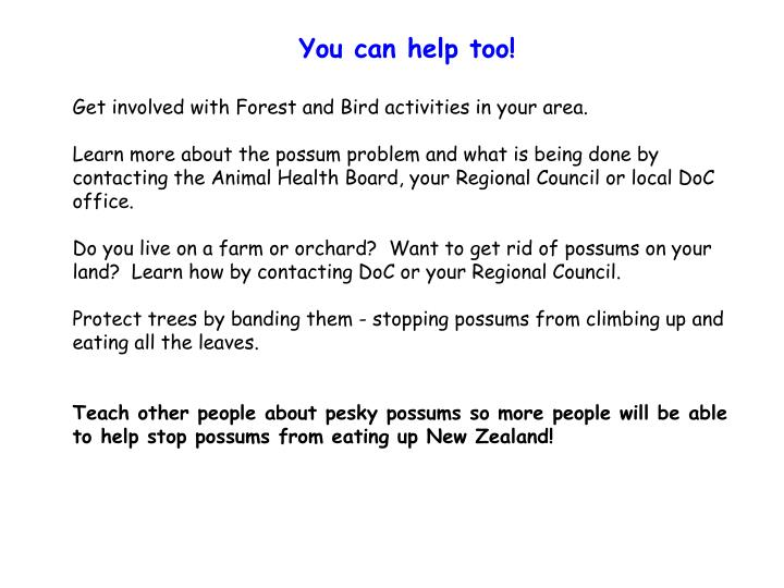 Ppt is the possum native to nz powerpoint presentation - How to get rid of possums in the garden ...