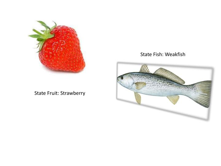State Fish: Weakfish