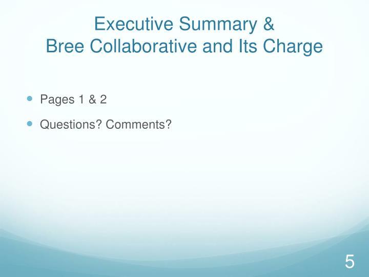 Executive Summary &