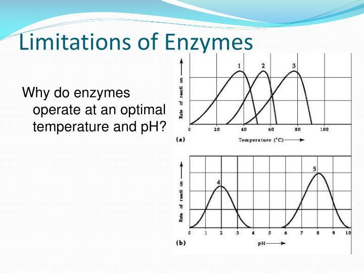 Limitations of Enzymes