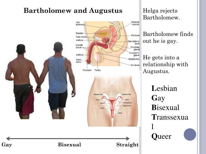 Bartholomew and Augustus