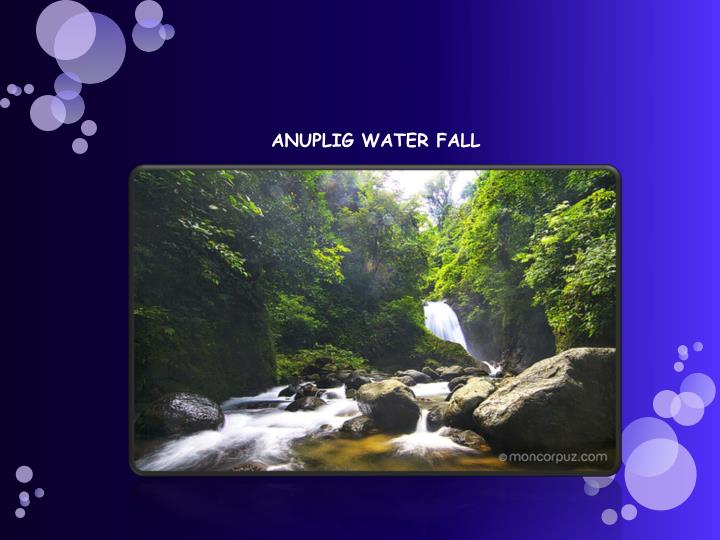 ANUPLIG WATER FALL