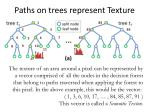 paths on trees represent texture