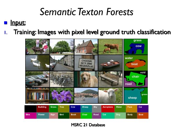 Semantic texton forests