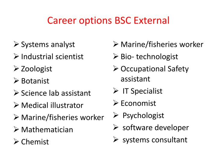 Career options BSC External