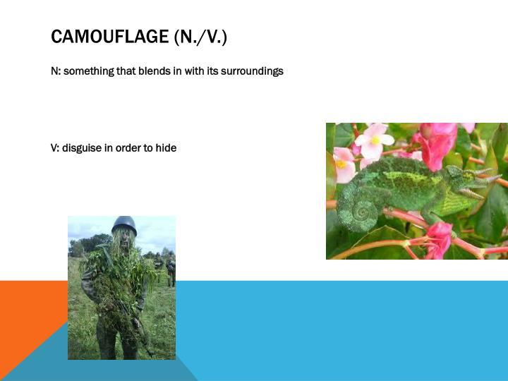 Camouflage (n./v.)