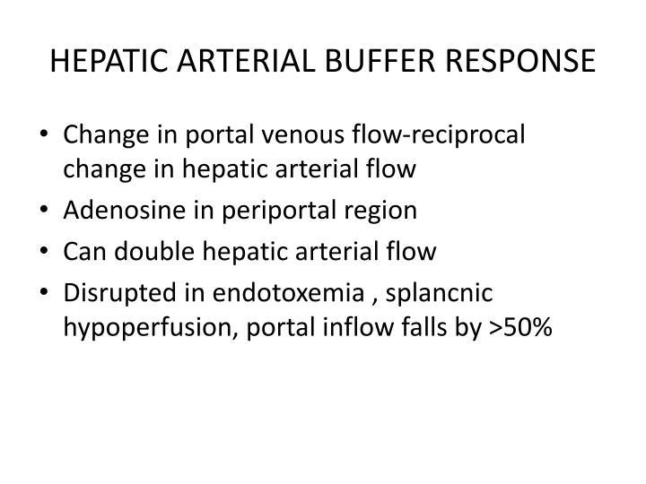 HEPATIC ARTERIAL BUFFER RESPONSE