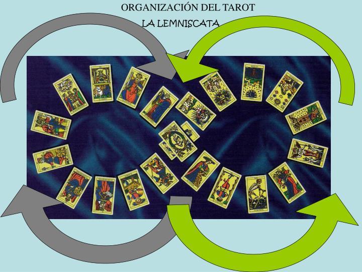ORGANIZACIÓN DEL TAROT