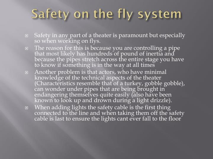 Safety on the fly system
