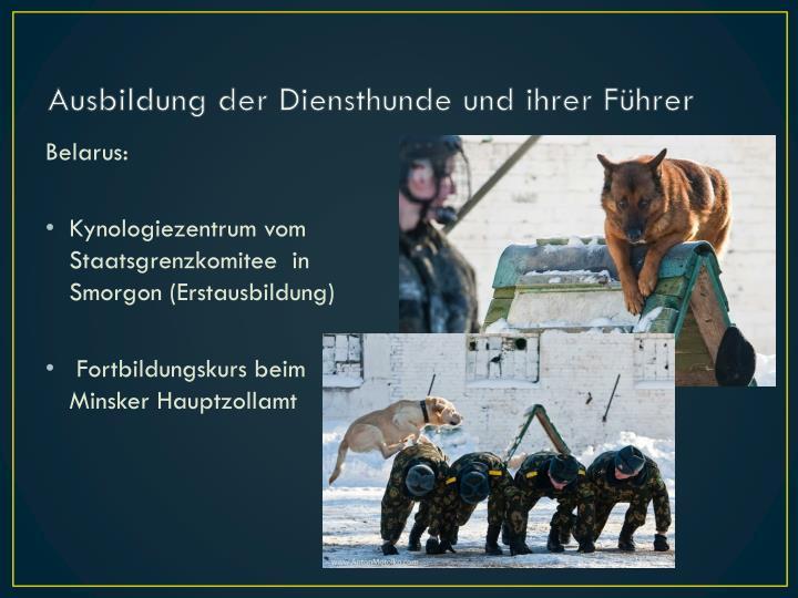 Ausbildung der Diensthunde und ihrer Führer