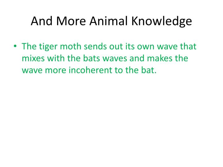 And More Animal Knowledge