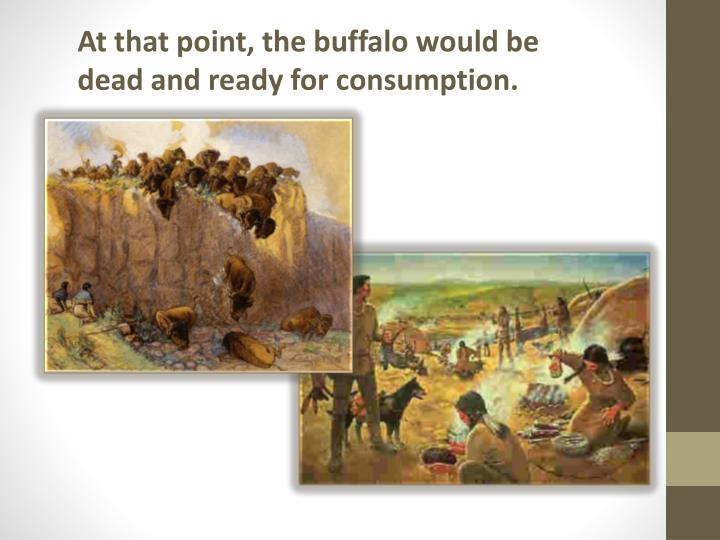 At that point, the buffalo would be dead and ready for consumption.