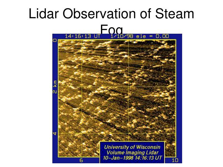 Lidar Observation of Steam Fog