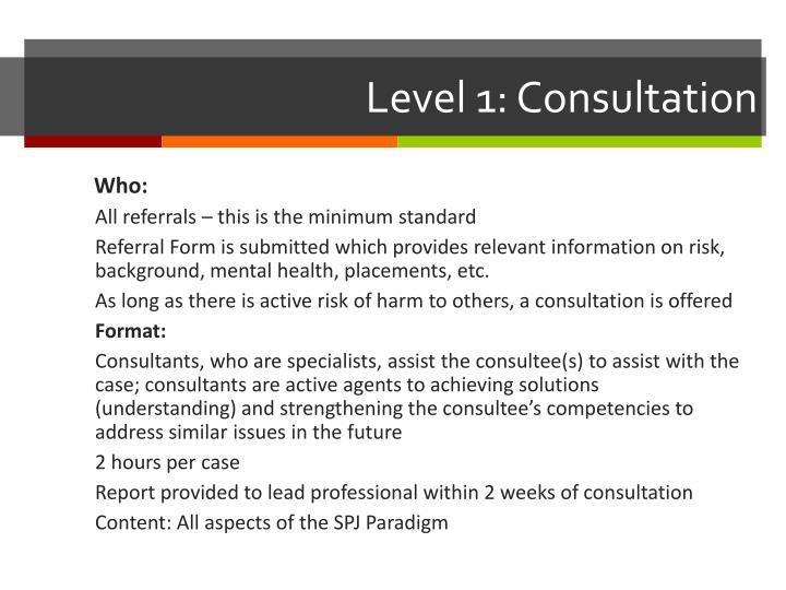 Level 1: Consultation