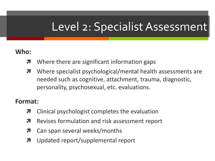 Level 2: Specialist Assessment