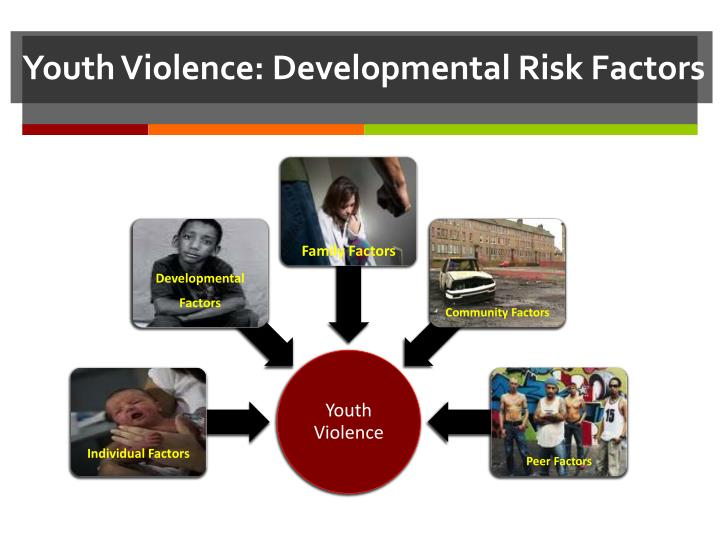 Youth Violence: Developmental Risk Factors