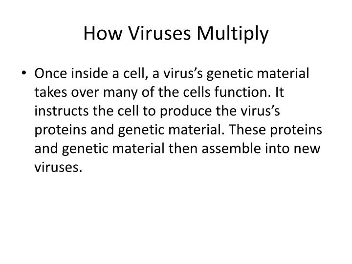 How Viruses Multiply