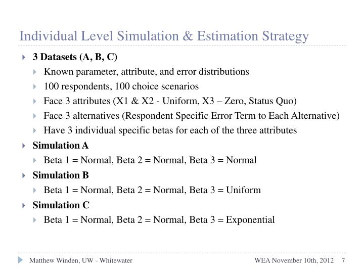 Individual Level Simulation & Estimation Strategy