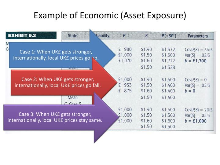 Example of Economic (Asset Exposure)