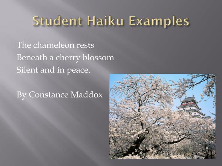 Student Haiku Examples