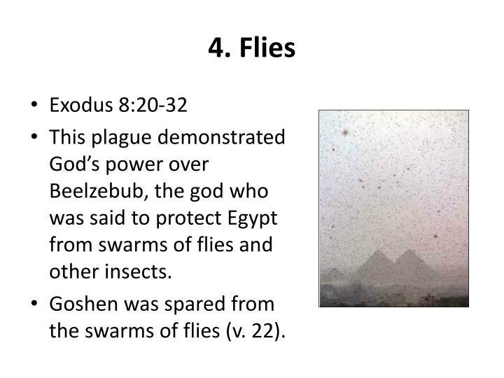 4. Flies