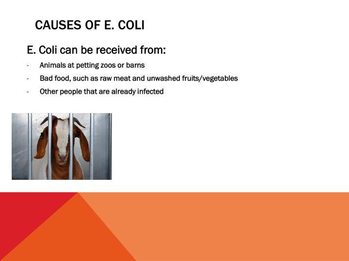 Causes of e. coli