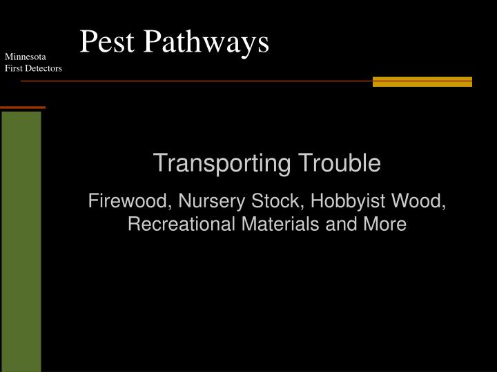 Pest pathways