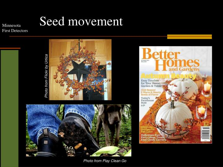 Seed movement