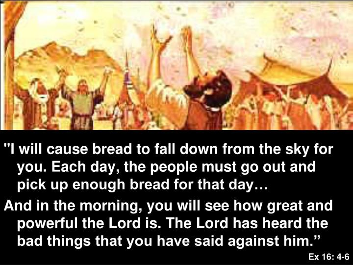 """I will cause bread to fall down from the sky for you. Each day, the people must go out and pick up enough bread for that day…"