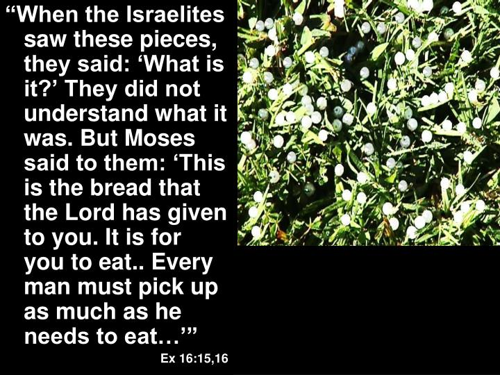 """When the Israelites saw these pieces, they said: 'What is it?' They did not understand what it was. But Moses said to them: 'This is the bread that the Lord has given to you. It is for you to eat.. Every man must pick up as much as he needs to eat…'"""