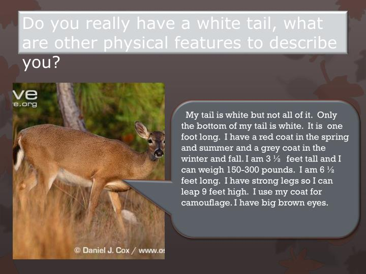 Do you really have a white tail what are other physical features to describe you