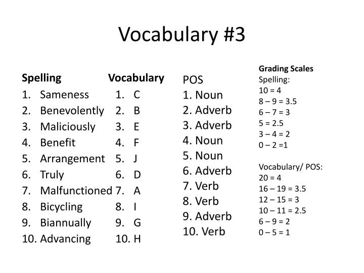 Vocabulary #3